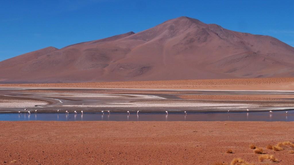 Eldoradonews vous propose une balade la tête dans le ciel bolivien